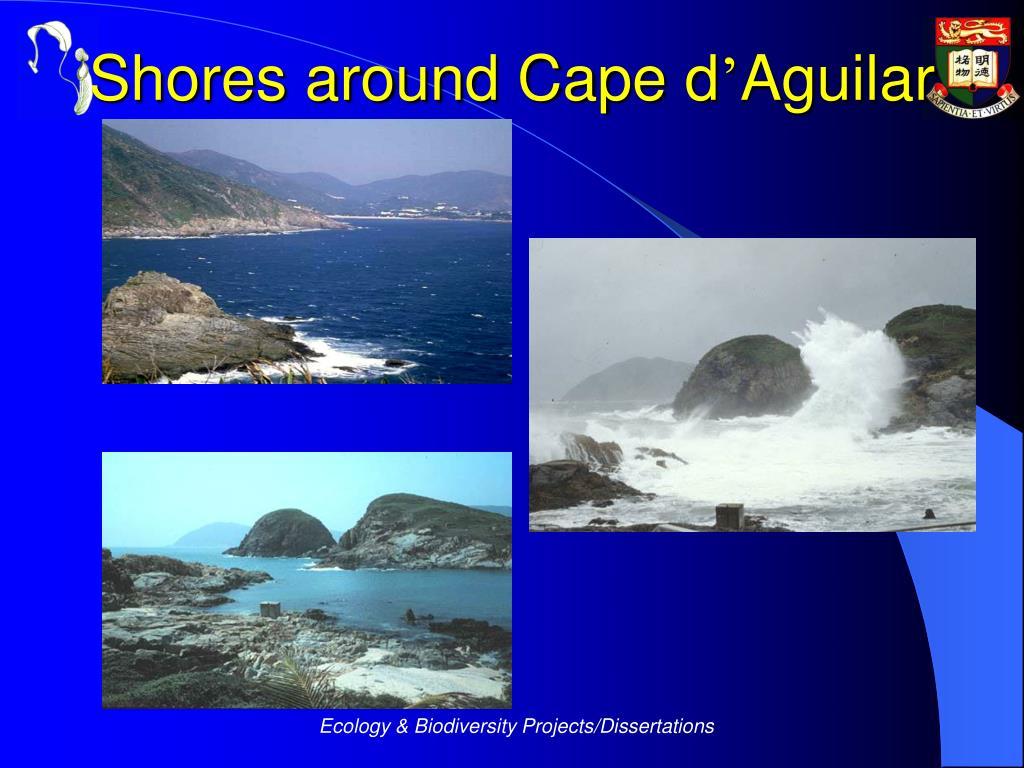 Shores around Cape d