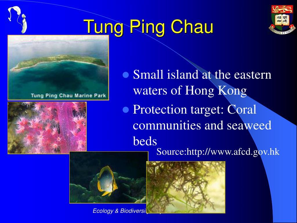 Tung Ping Chau