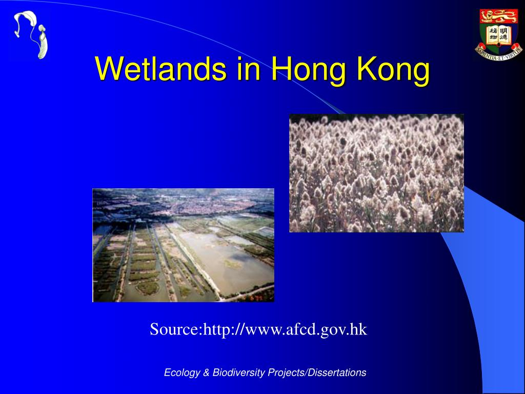 Wetlands in Hong Kong