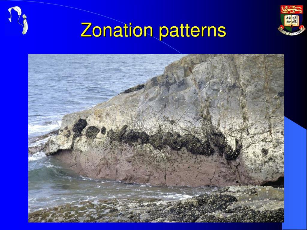 Zonation patterns