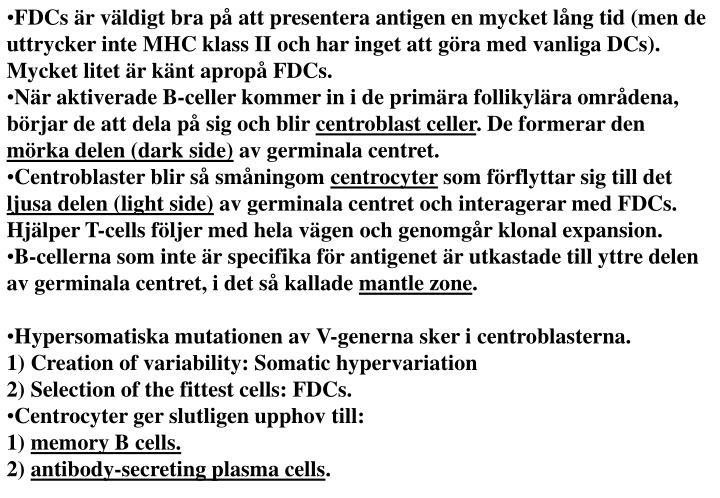 FDCs är väldigt bra på att presentera antigen en mycket lång tid (men de