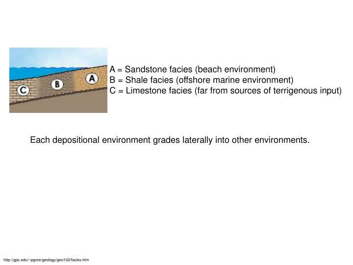 A = Sandstone facies (beach environment)