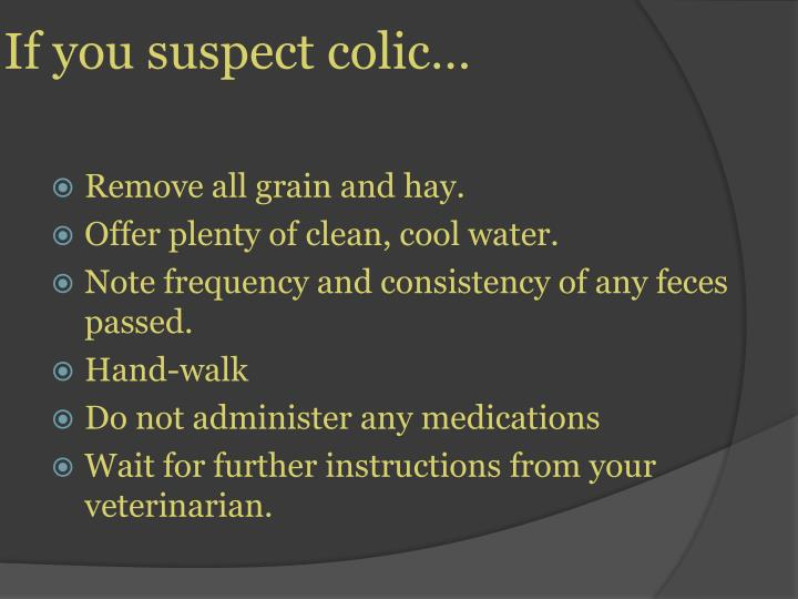 If you suspect colic…