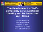 the development of self complexity as occupational identity and its impact on well being