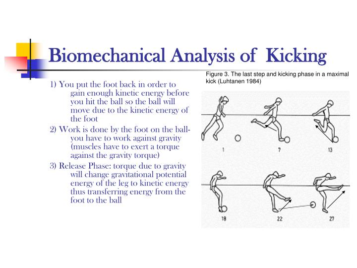a biomechanical analysis of skilled movement Movement analysis can be evaluated kinematically where movement is observed and described qualitatively, or kinetically, where the forces applied by the performer are measured quantitatively kicking is a fundamental asymmetrical skill required within soccer and is highly researched due to the popularity of the sport.