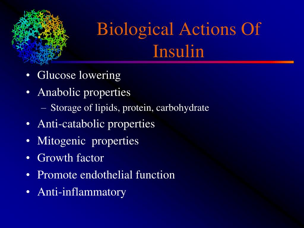 Biological Actions Of Insulin