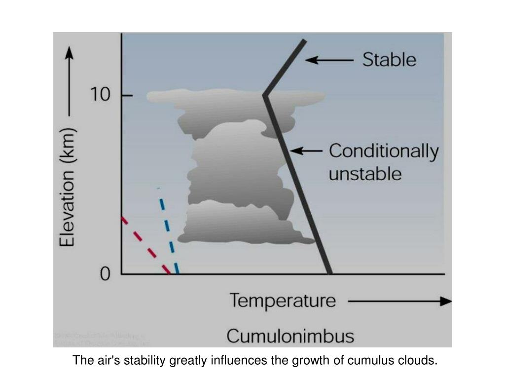 The air's stability greatly influences the growth of cumulus clouds.