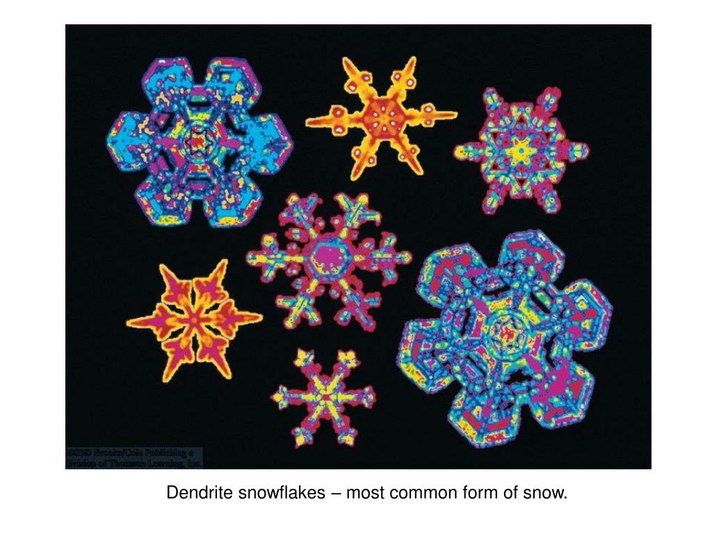 Dendrite snowflakes – most common form of snow.