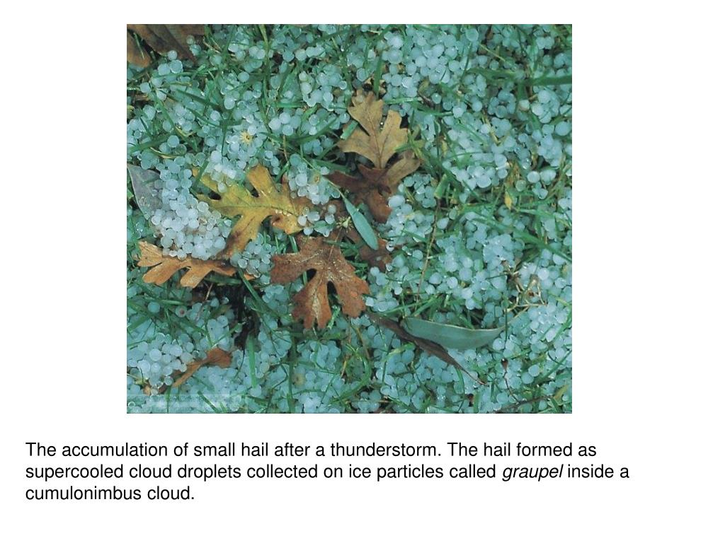 The accumulation of small hail after a thunderstorm. The hail formed as supercooled cloud droplets collected on ice particles called