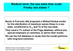 medium term the sea state time scale freaky sea states