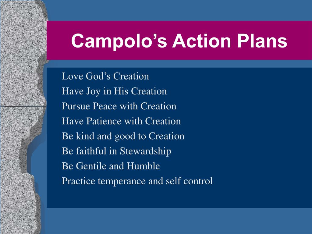 Campolo's Action Plans