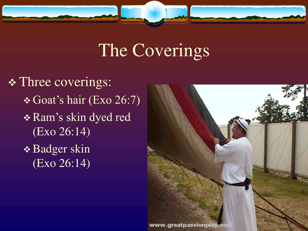 The Coverings
