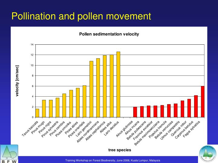Pollination and pollen movement