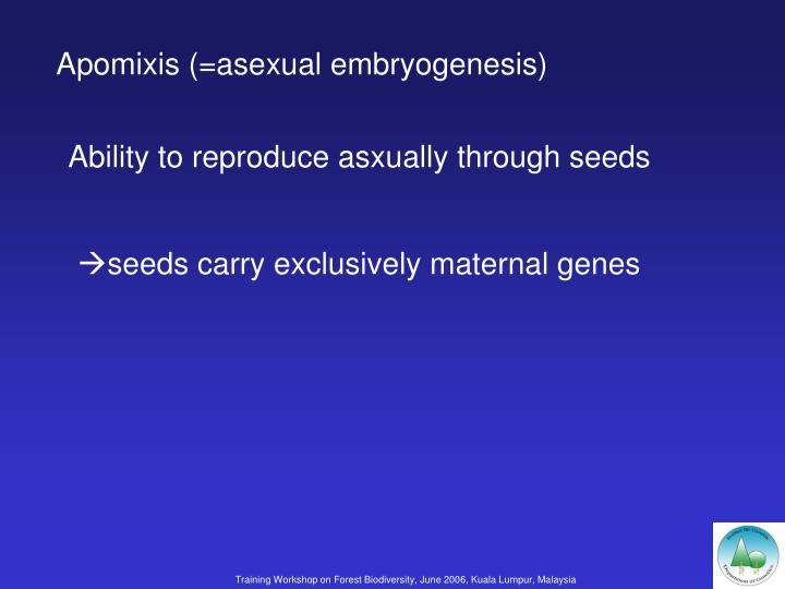 Apomixis (=asexual embryogenesis)