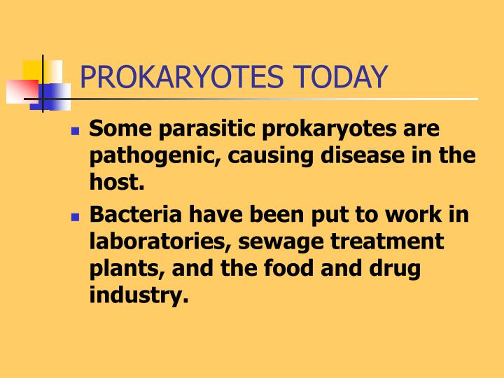 PROKARYOTES TODAY