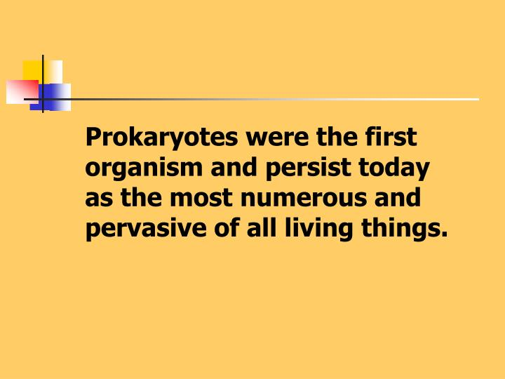 Prokaryotes were the first organism and persist today as the most numerous and pervasive of all livi...