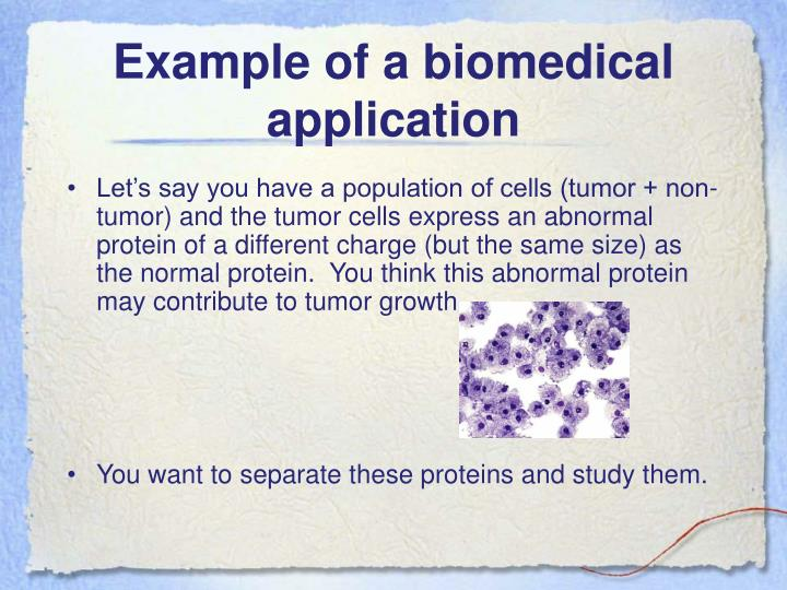 Example of a biomedical application