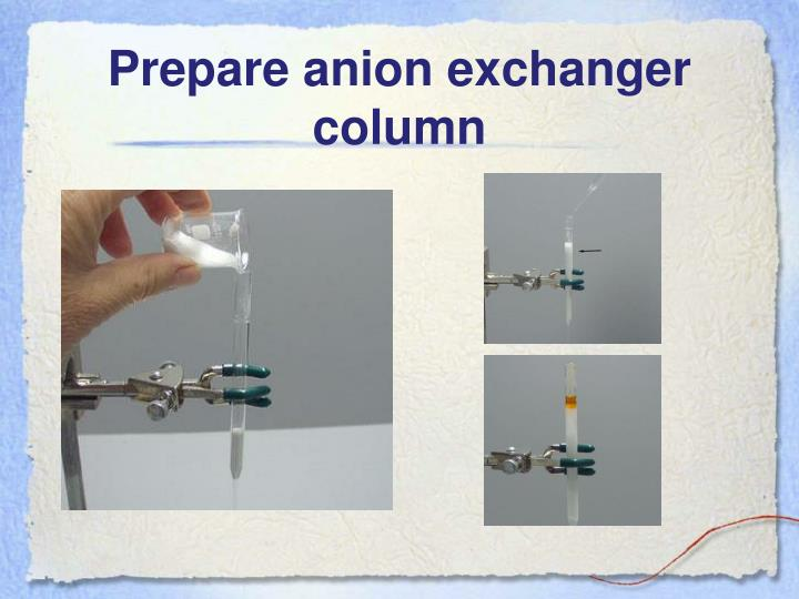 Prepare anion exchanger column