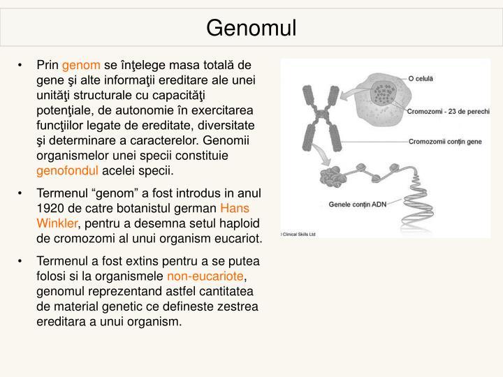 Genomul