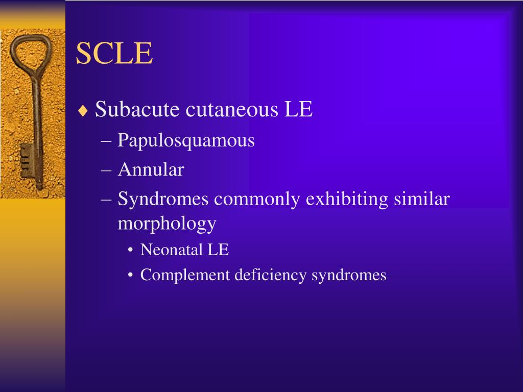 SCLE