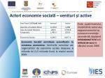 actori economie social venituri i active