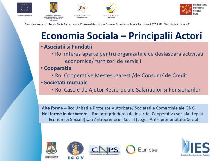 Economia Sociala – Principalii Actori