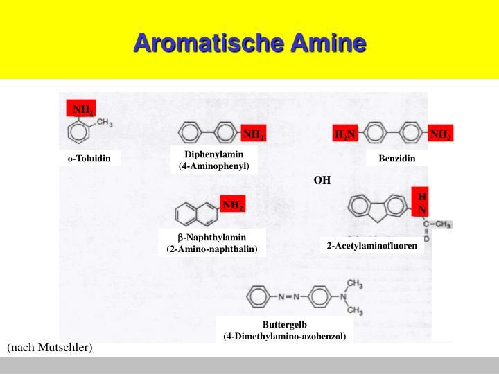 Aromatische Amine