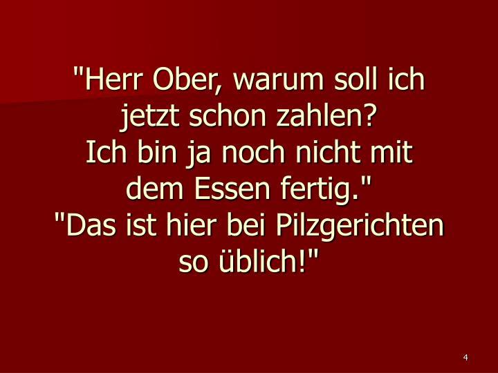 """""""Herr Ober, warum soll ich"""