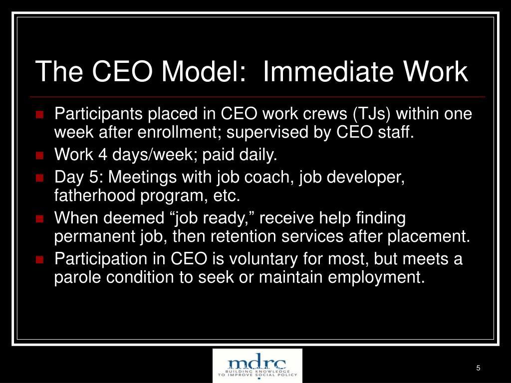 The CEO Model:  Immediate Work