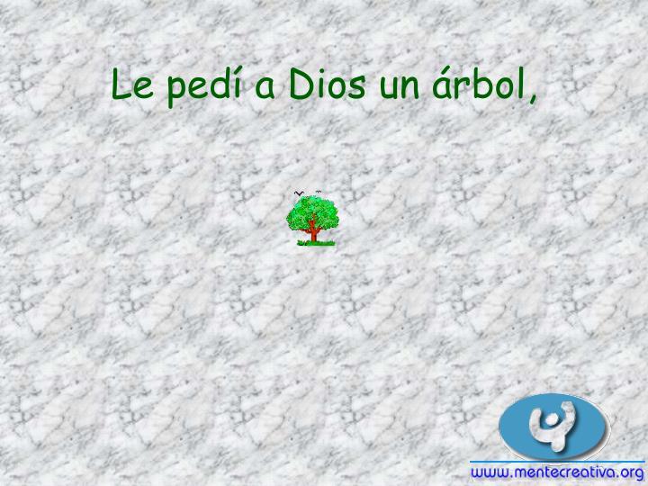 Le pedí a Dios un árbol,