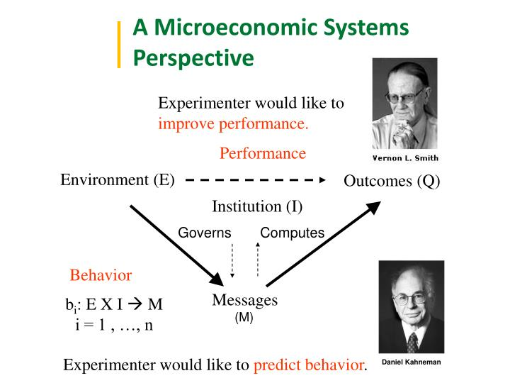 A Microeconomic Systems