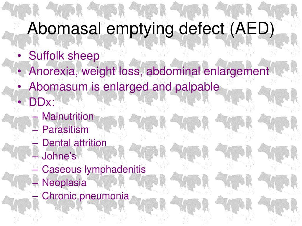 Abomasal emptying defect (AED)