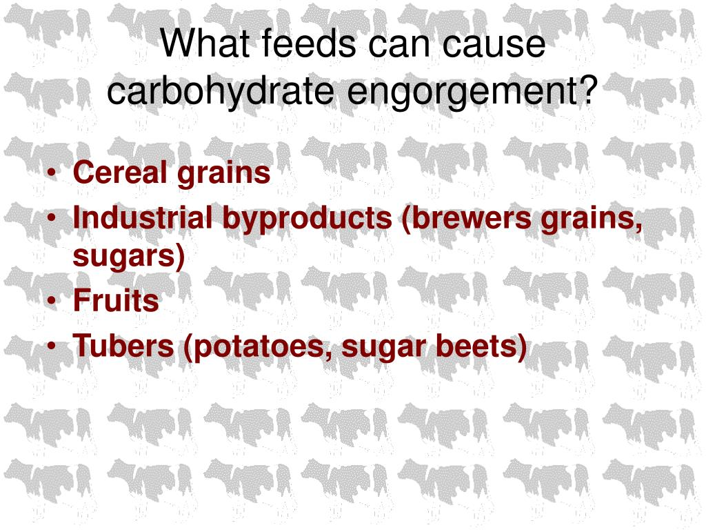 What feeds can cause carbohydrate engorgement?