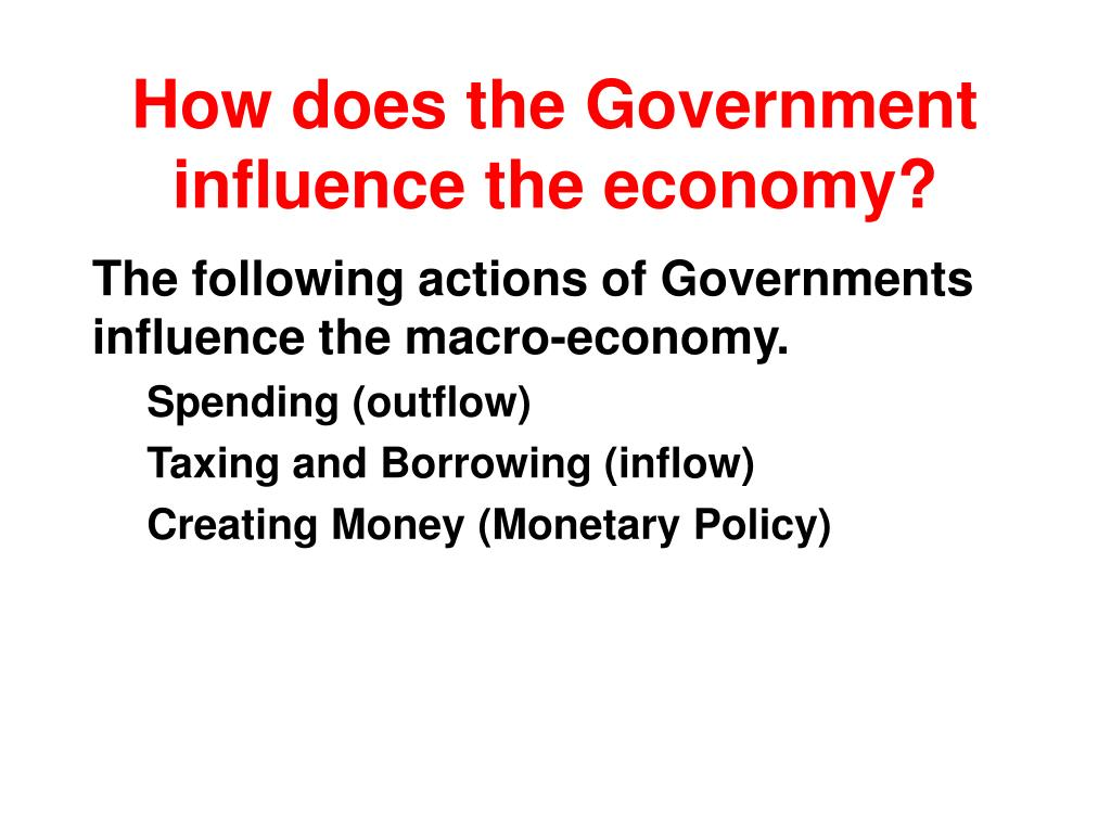 How does the Government influence the economy?