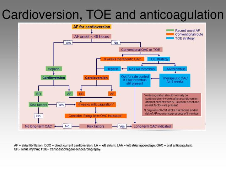 Cardioversion, TOE and anticoagulation