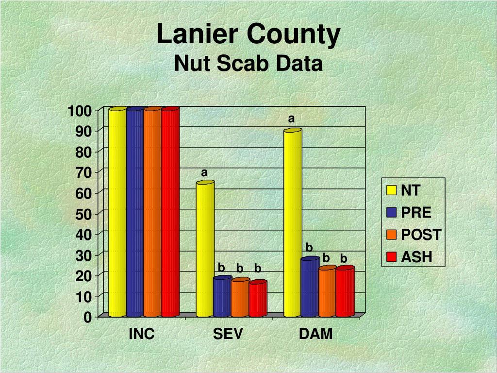 Lanier County