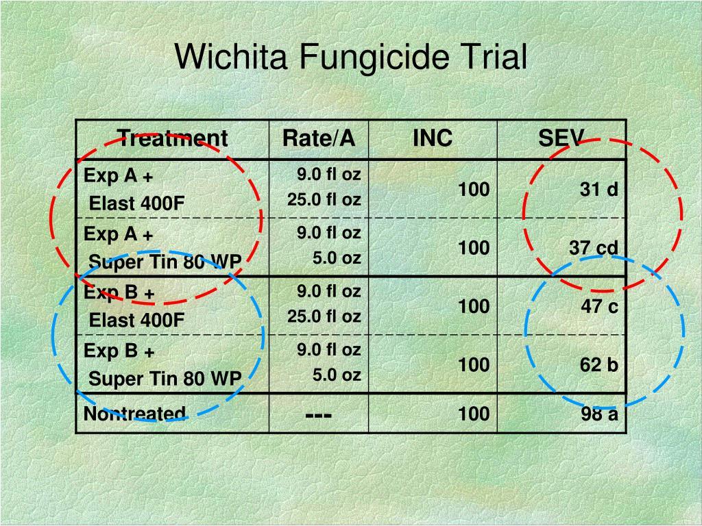 Wichita Fungicide Trial