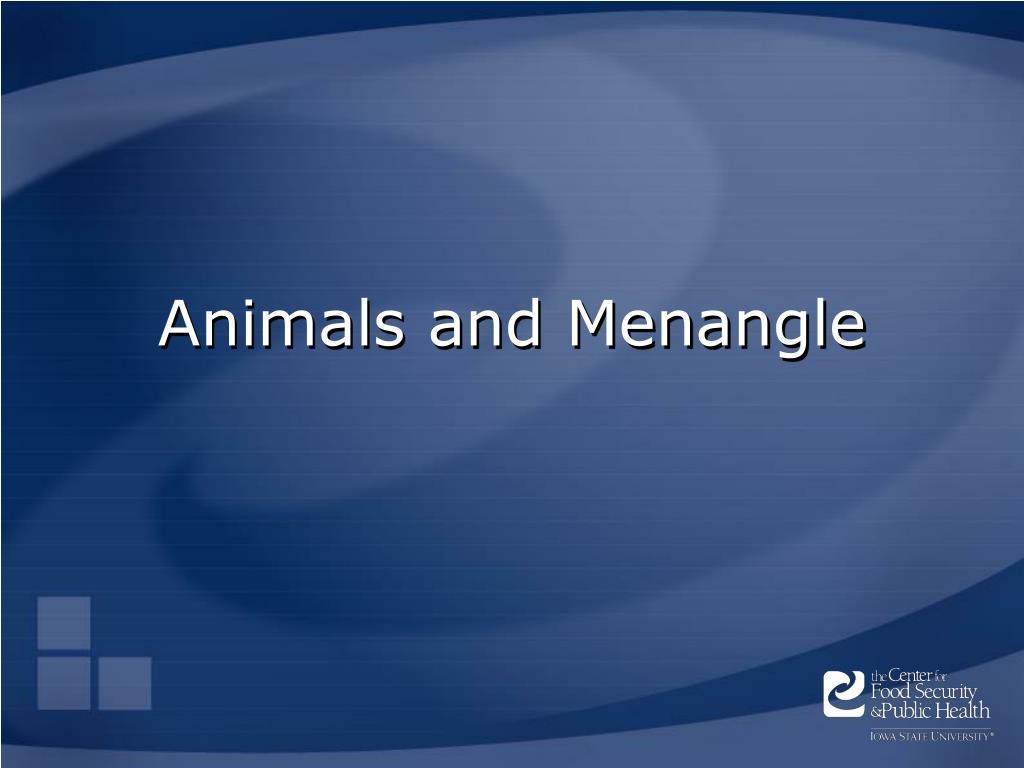Animals and Menangle
