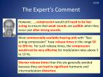 the expert s comment3