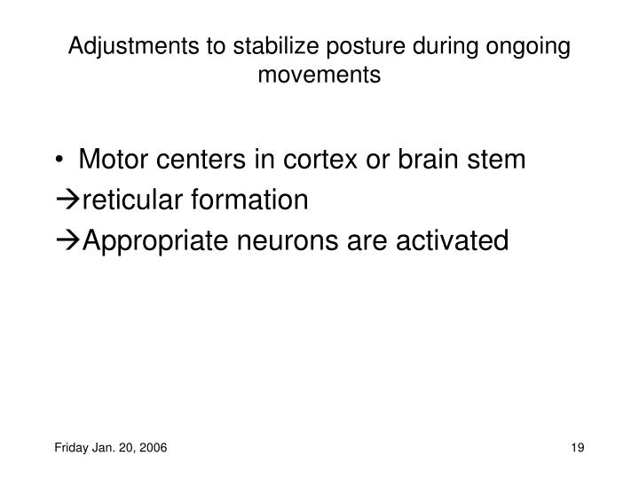 Adjustments to stabilize posture during ongoing movements