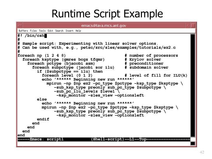 Runtime Script Example