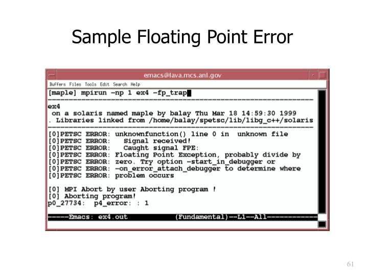 Sample Floating Point Error
