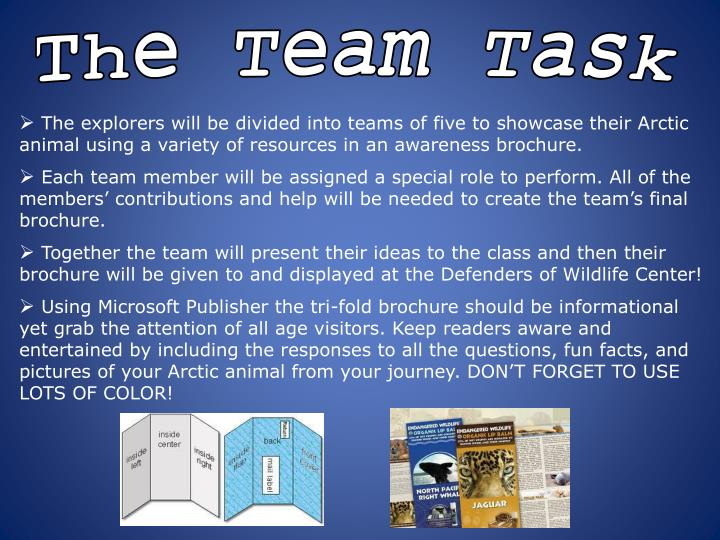 The Team Task