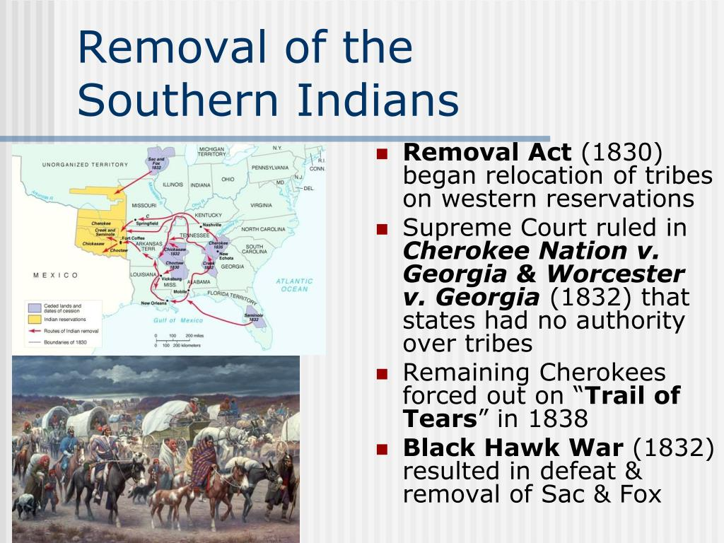 jacksonian era the removal policy Remini's the jacksonian era focuses on north america during jackson's asc free essays  how did slavery and indian removal affect the united states during the jacksonian era before jackson's ascent to the presidency, slavery in the united states had started to come to its end  one of the controversial policies he is known for is the.