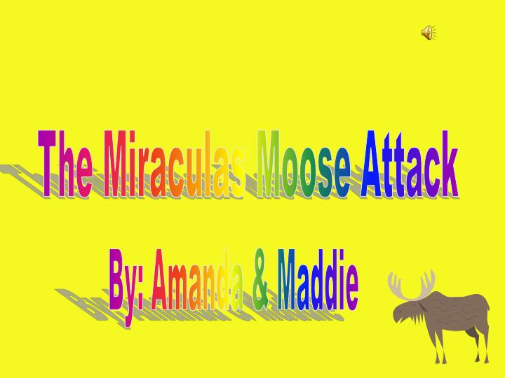 The Miraculas Moose Attack