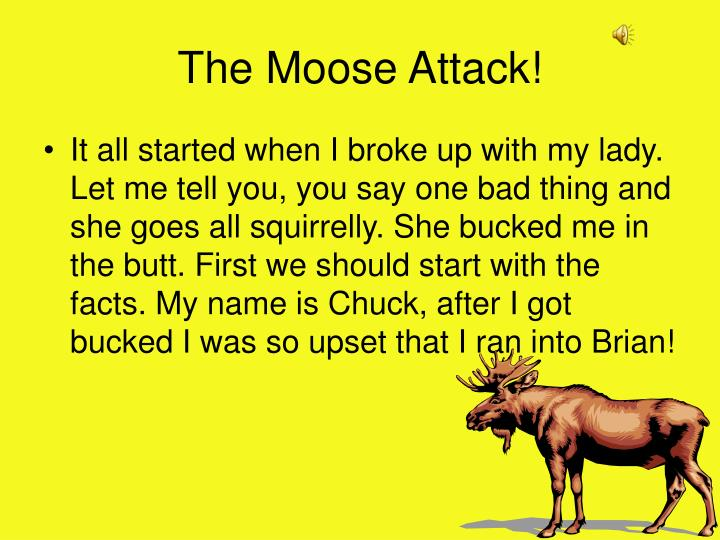 The Moose Attack!