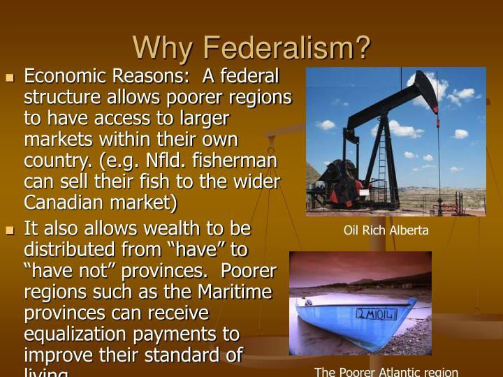 Why Federalism?