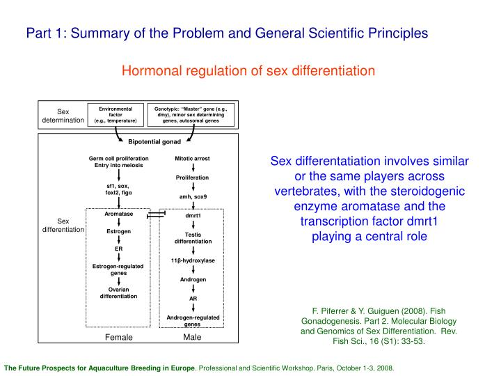 Part 1: Summary of the Problem and General Scientific Principles