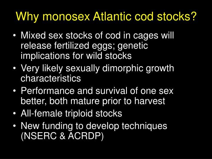 Why monosex Atlantic cod stocks?