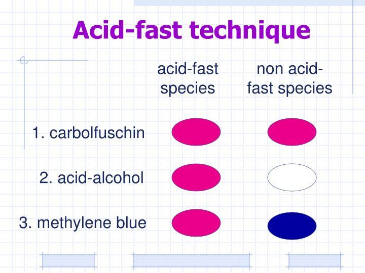 Acid-fast technique